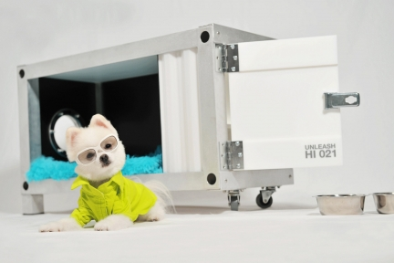 """Container Doghouse """"21"""""""