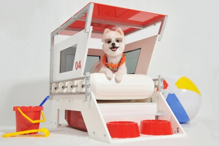"Lifeguard Doghouse ""04"""
